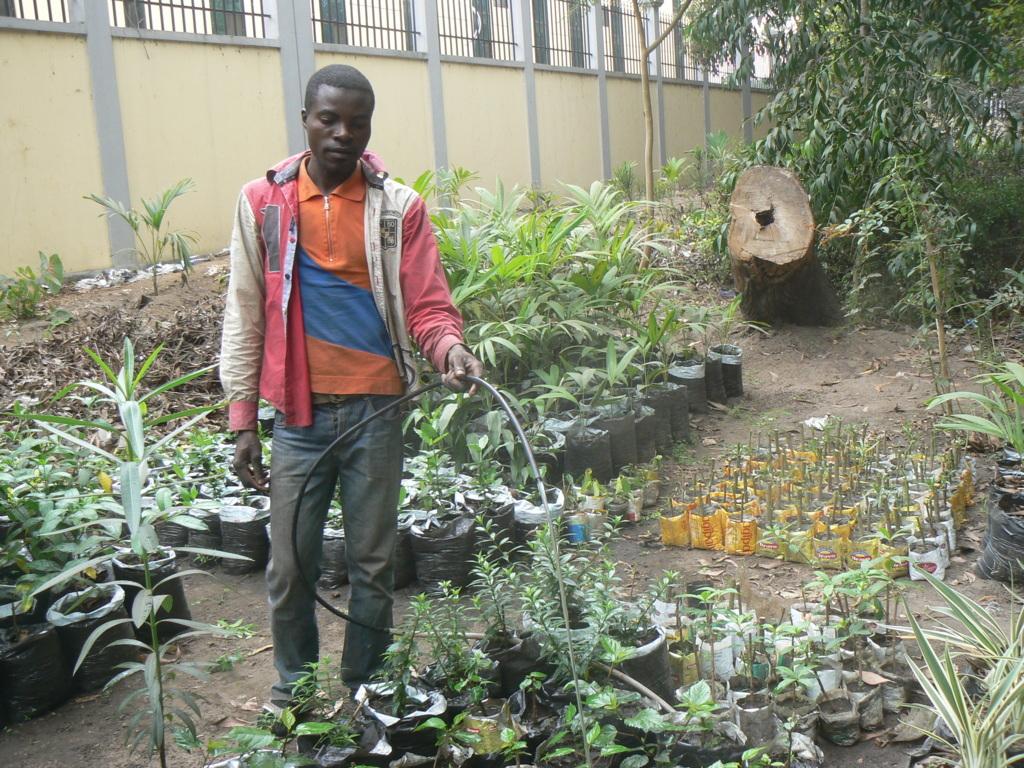 La d couverte d un m tier l horticulteur paysagiste for Horticulteur paysagiste